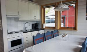 Moderne kjøkken med oppvaskmaskin